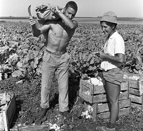 Deutsche ASF-Volontäre in einem Kibbuz, 1962   © David Rubinger / Yedioth Acheronot